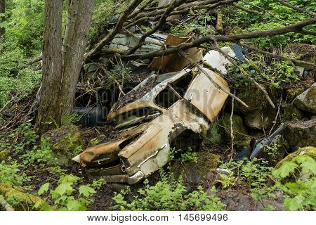 Old car wreck from the fifties dumped in the forest.