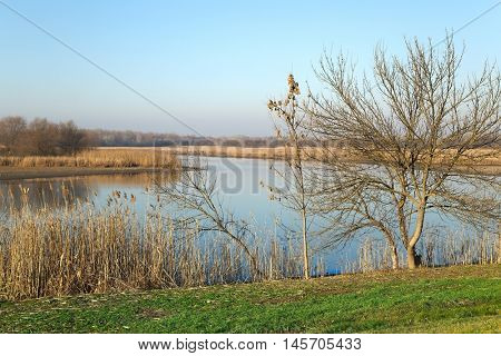 Lakeside landscape in autumn sunny weather