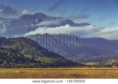 Idyllic sunny scenery with ripe cereal field and majestic Bucegi mountains range at the horizon in Transylvania region Romania.