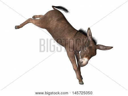 3D Rendering Donkey On White