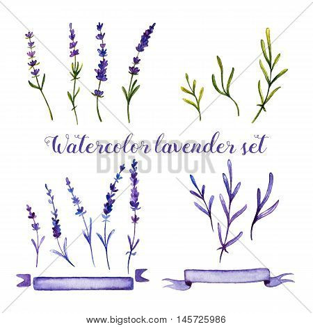 Set of watercolor lavender and ribbons on white background. Handdrawn watercolor illustration. Design by flyer poster printing mailing invitation card wedding.
