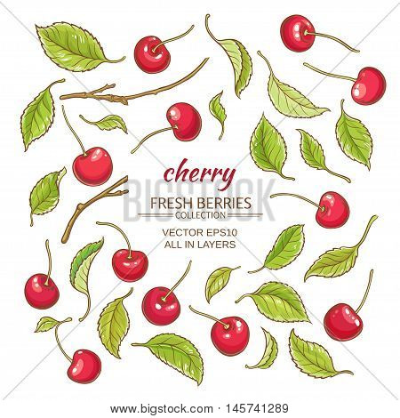 cherry elements vector set on white background