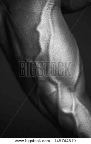 Human body forearm in black and white