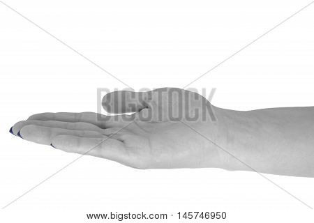 Open hand holding anything, middle-aged woman's skin, blue manicure. Isolated on white background.
