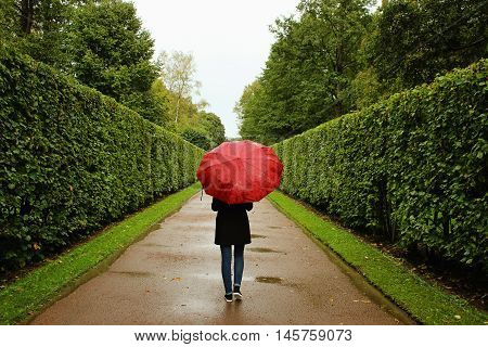 A young girl walks along the green alleys from the bushes in the rain with a red umbrella.