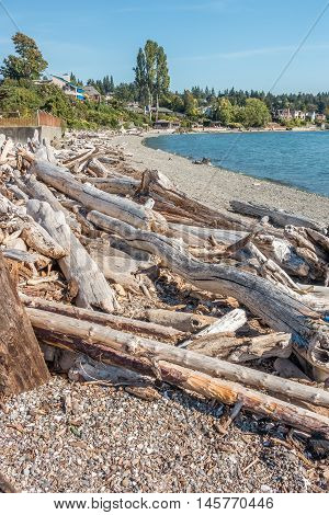A view of piles of driftwood on the shore at Normandy Park Washington.