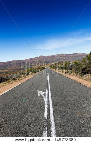 Going - Swartberg Nature Reserve