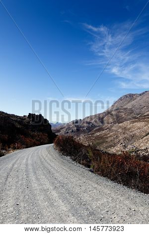 After Fire - Swartberg Nature Reserve