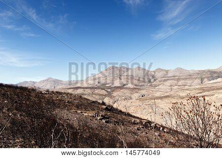 Mountain - Swartberg Nature Reserve