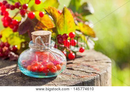 Bottles Of Guelder Rose (red Viburnum) Berries On Stump Outdoors, Herbal Medicine. Selective Focus.