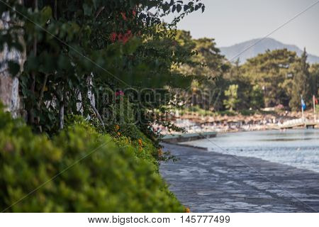 Turkish Marmaris landscape in the evening with sea and trees