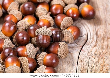 Close up view of seasonal autumn acorn decorations on rustic wood. Selective focus on single acorn on top of pile.