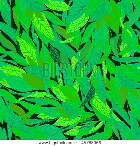 Vector colorful seamless background with green leaves. Modern illustration. Can be used for wallpaper pattern fills web page surface textures textile print wrapping paper.