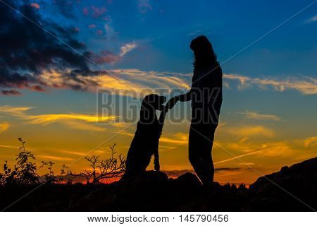 A silhouette of a young woman and her mutt dog at sunset.
