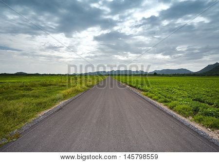 asphalt road between field in cloudy day country side view at Lopburi Thailand