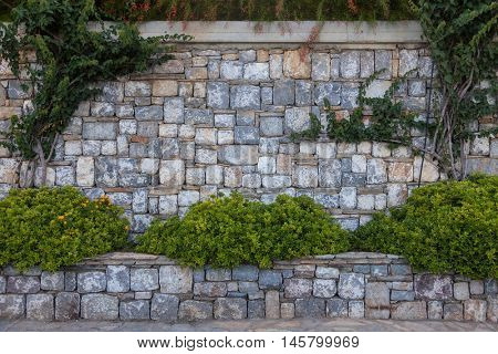 Sandstone wall with green grass and flowers. Medieval design template or hisrtory art