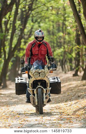 Motorcycle rider driving threw the forest, color image