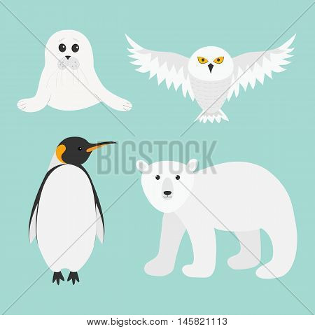 Arctic polar animal set. White bear owl king penguin Emperor Aptenodytes Patagonicus Seal pup baby harp. Kids education cards. Winter antarctica blue background Flat design. Vector illustration