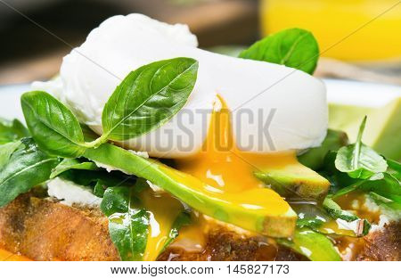 Poached egg on a piece of bread with avocado arugula and basil leaves close up