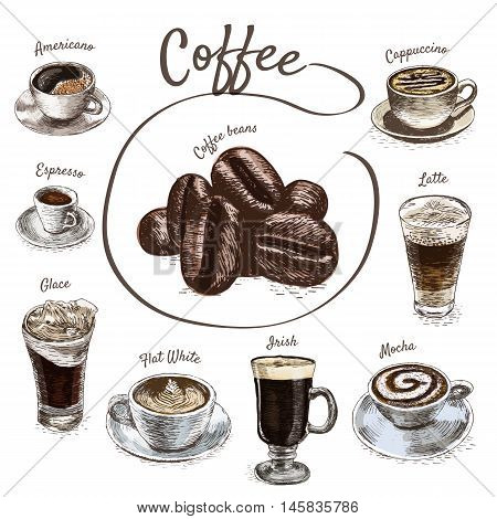 Vector illustration colorful set with coffee. Various kinds of coffee on white background
