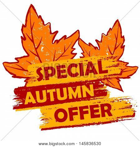 special autumn offer banner - text in orange and brown drawn label with leaf signs, business seasonal shopping concept, vector