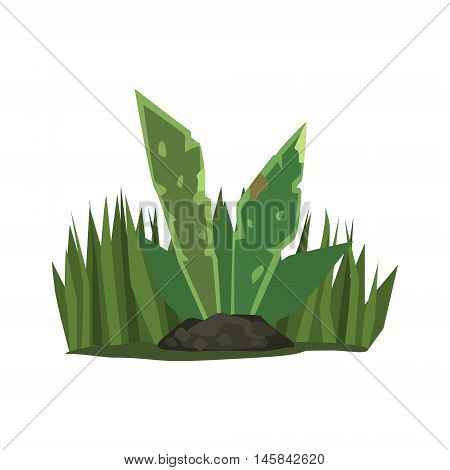 Tropical Plant With Big Leaves Jungle Landscape Element. Simple Tropical Forest Object Illustration Isolated On White Background.
