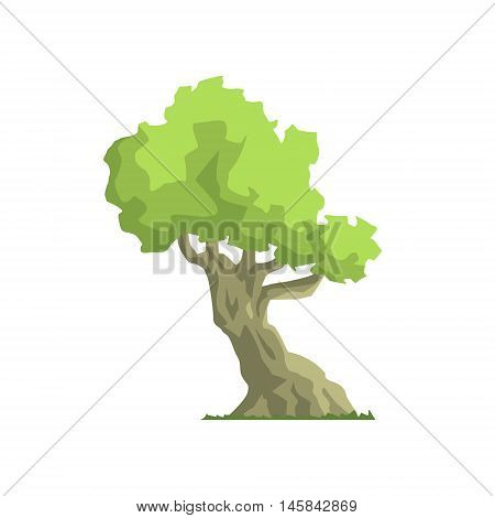 Inclined Tropical Foliage Tree Jungle Landscape Element. Simple Tropical Forest Object Illustration Isolated On White Background.