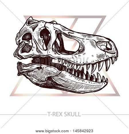 Dinosaur Skull. Trendy Design With Drawing Of T-Rex Skull