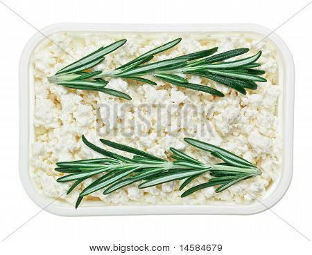 Cottage Cheese (curd) In Square Plate With Rosemary Twig