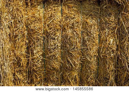 Close up of a straw bales background.Straw bale texture.