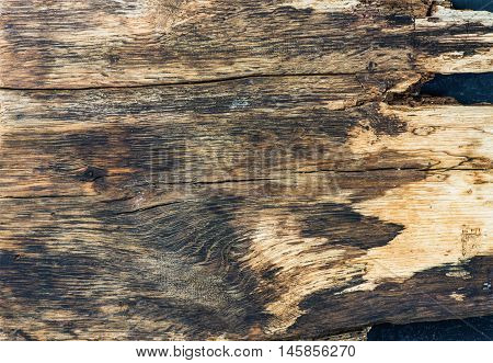 Old rustic natural wood texture, wallpaper and background, horizontal