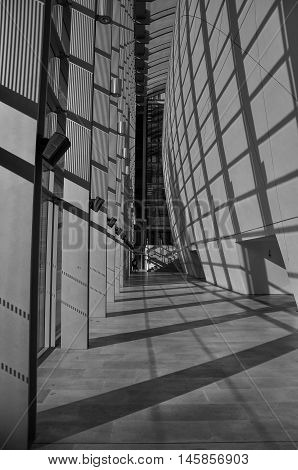 Hall way in Natural History Museum London, UK - October 15, 2011 (processed in black and white)