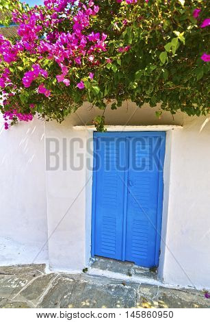 traditional blue window and bougainvillea at Cyclades Greece