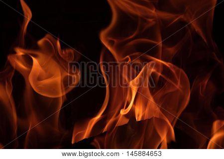Fire flames burn wood logs in a brick fireplace.