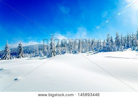 Beautiful mountain snowy landscape and snow covered trees. Beautiful sunny day in the mountains