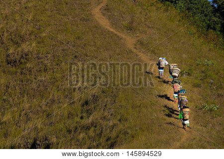 Porters carrying up to Doi monjong the mountain in ChiangMai, Thailand..