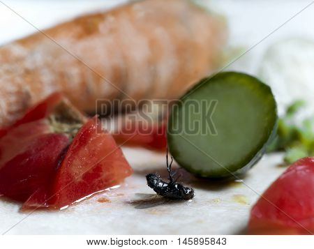 A dead fly next to chopped vegetables macro shot concept of unsanitary. Shallow depth of field