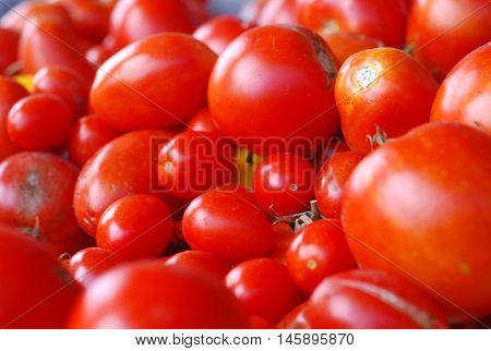 Fresh homegrown red tomatoes in a pile