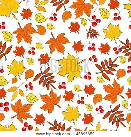 Pattern with autumn leaves on a white background. Seamless autumn pattern. Vector. Fabric for the fall collection. Autumn. Foliage