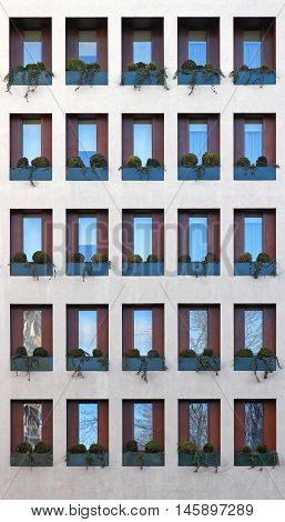 Plant Bushes in Windows at Modern Building Repetition