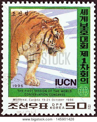 NORTH KOREA - CIRCA 1996: A stamp printed in North Korea issued for the World Conservation Union Congress, Montreal, Canada shows a Tiger (Panthera tigris), circa 1996.