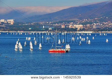 GELENDZHIK, RUSSIA - NOVEMBER 7, 2015: Sailing sport in sea resort town of Gelendzhik in sunny day on Black sea coast on November 7, 2015 in city-resort Gelendzhik, Russia