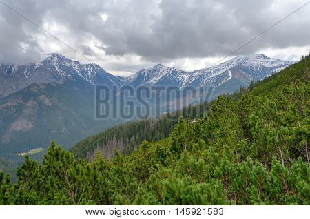 Spring cloudy mountain landscape. Mountain peaks in the clouds in Western Tatra Poland.