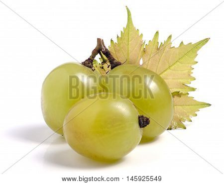 Green grapes with leaf isolated on white background.