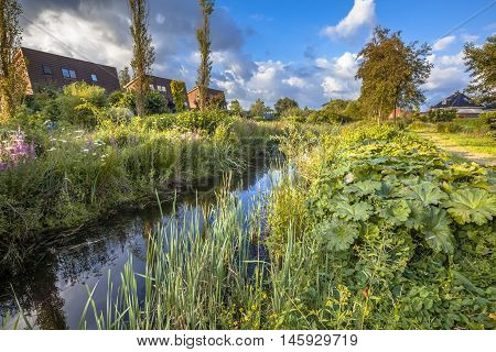 Ecological Drainage Canal