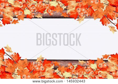 abstract background of autumn leaves. Indian summer