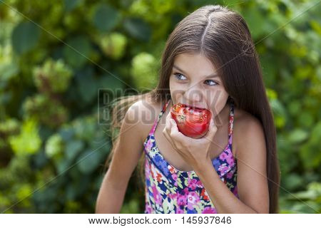 Portrait of a beautiful Little girl eating a slice of tomato on the background of summer park