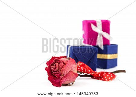 Dried rose flower and gift box isolated on a white background.