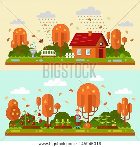 Flat design vector autumn landscape illustrations with house, bench, rain, puddles, leaf fall. Garden with beds of carrots, tomatoes, gardener. Farming, agricultural, organic products concept.