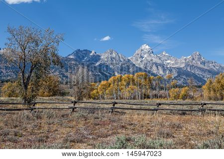 a beautiful autumn landscape in the tetons of northwest Wyoming